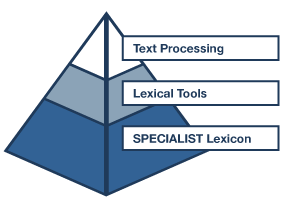 Lexical Systems Group logo image with pyramid